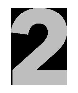 2 Icon copy